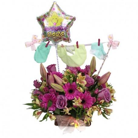 Nacimiento Flores y Ropita Niña