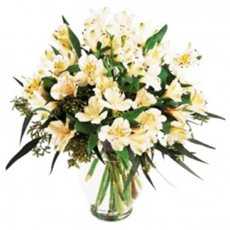 Florero para Condolencias de 30 Astromelias Blancas