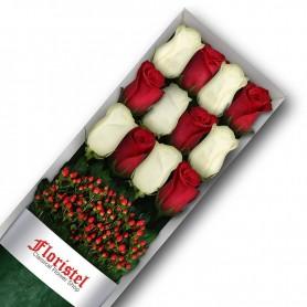 Caja de 12 Rosas Rojas y Blancas