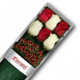Caja de 6 Rosas Rojas y Blancas
