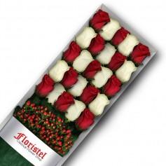 Caja de 25 Rosas Rojas y Blancas