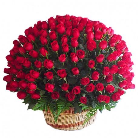 Canastillo Gigante con 100 Rosas Rojas