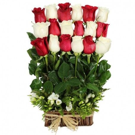 Canastillo 18 Rosas Blancas y Rojas en Coro