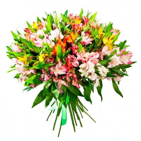Ramo 40 Astromelias Multicolores