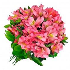 Ramo 40 Astromelias Color Rosadas