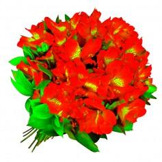 Ramo 40 Astromelias Color Rojas