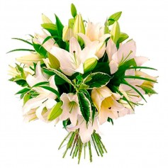 Ramos de Liliums Blancos para Condolencias