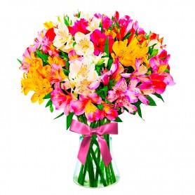 Florero 30 Astromelias Multicolores