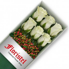 Caja de 6 Rosas Blancas