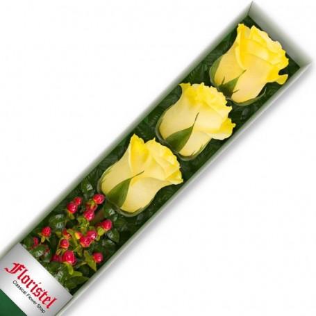 Caja de 3 Rosas Amarillas