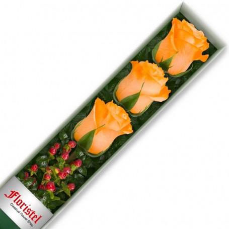 Caja de 3 Rosas Damasco