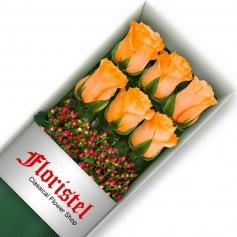 Caja de 6 Rosas Damasco