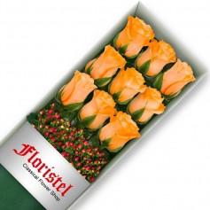Caja de 9 Rosas Damasco