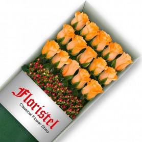 Caja de 15 Rosas Damasco