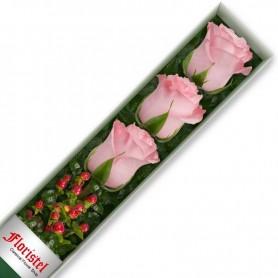 Caja de 3 Rosas Rosadas