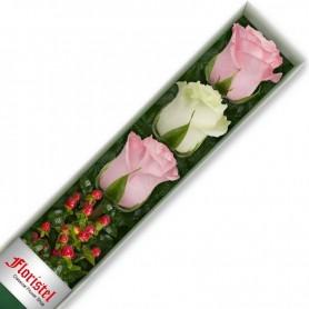 Cajas de 3 Rosas MIx Blancas y Rosadas