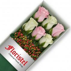 Cajas de 6 Rosas MIx Blancas y Rosadas