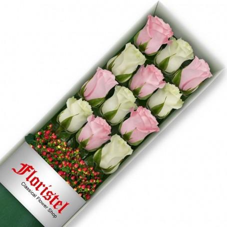 Cajas de 12 Rosas MIx Blancas y Rosadas