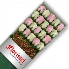 Cajas de 20 Rosas MIx Blancas y Rosadas