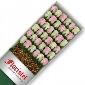 Cajas de 36 Rosas MIx Blancas y Rosadas
