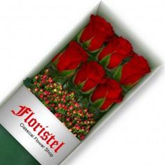 Cajas de 6 Rosas Rojas