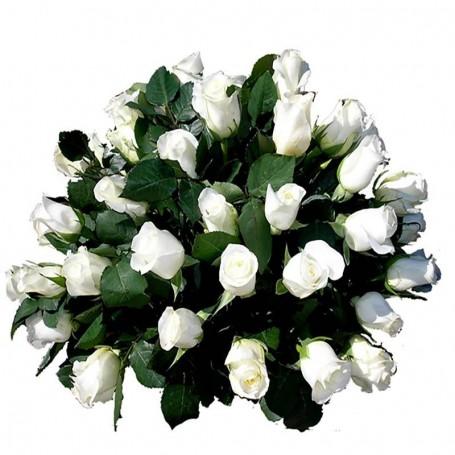 Ovalo con 25 Rosas Para Condolencia