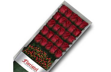 cajas con rosas a domicilio en Chile