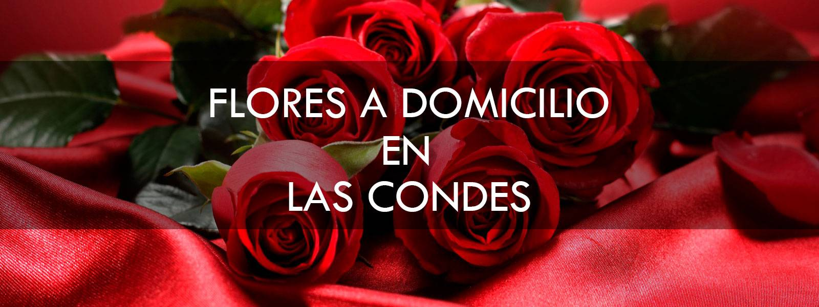 Flores a domicilio en Las Condes