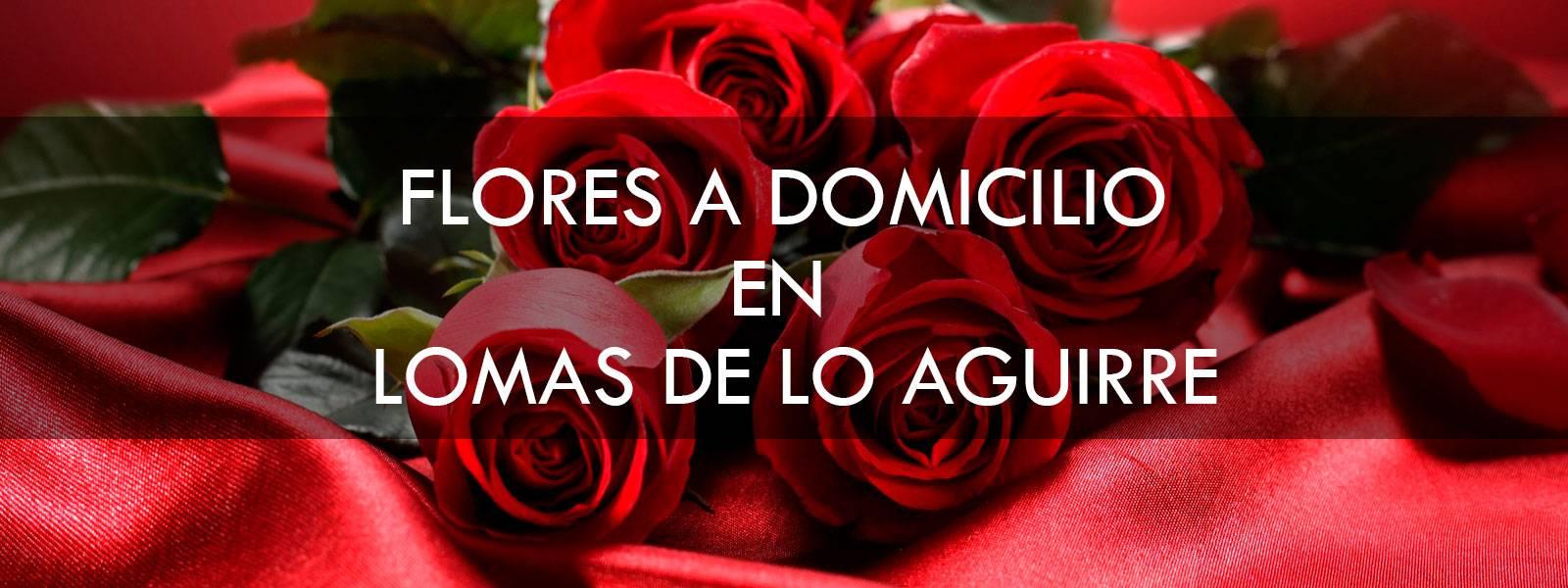 Flores a domicilio en Lomas de lo Aguirre
