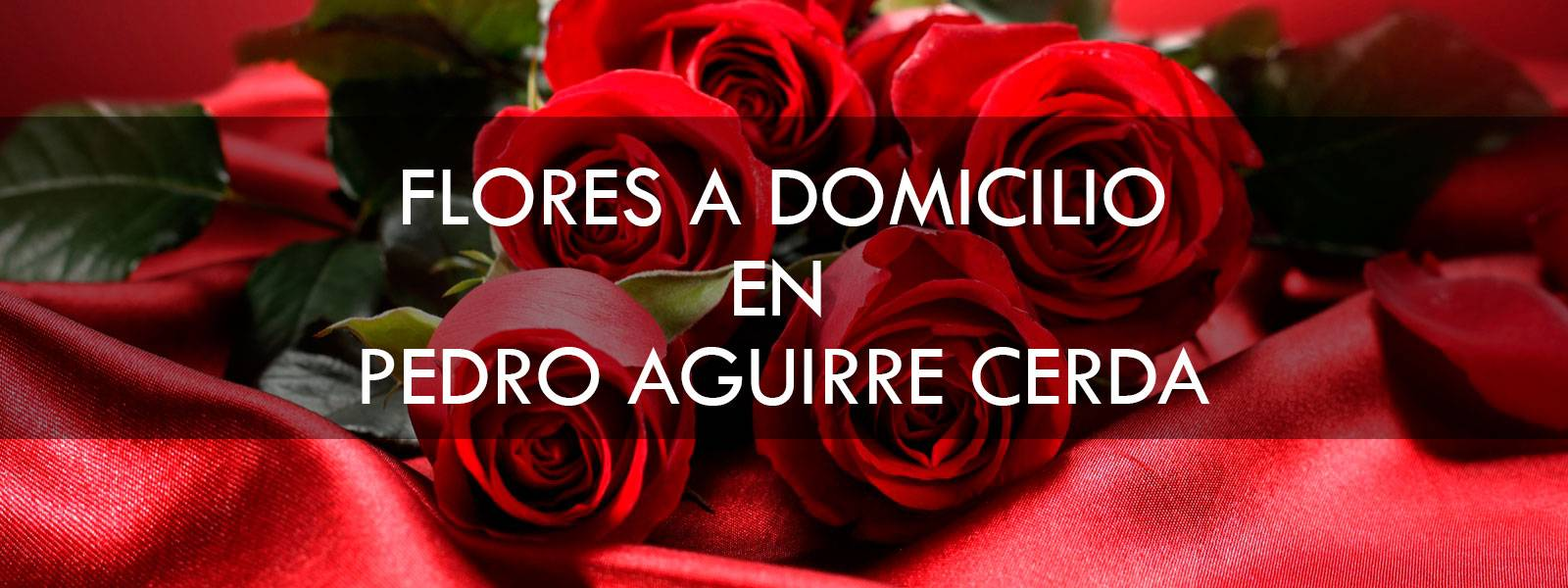 Flores a domicilio en Pedro Aguirre Cerda