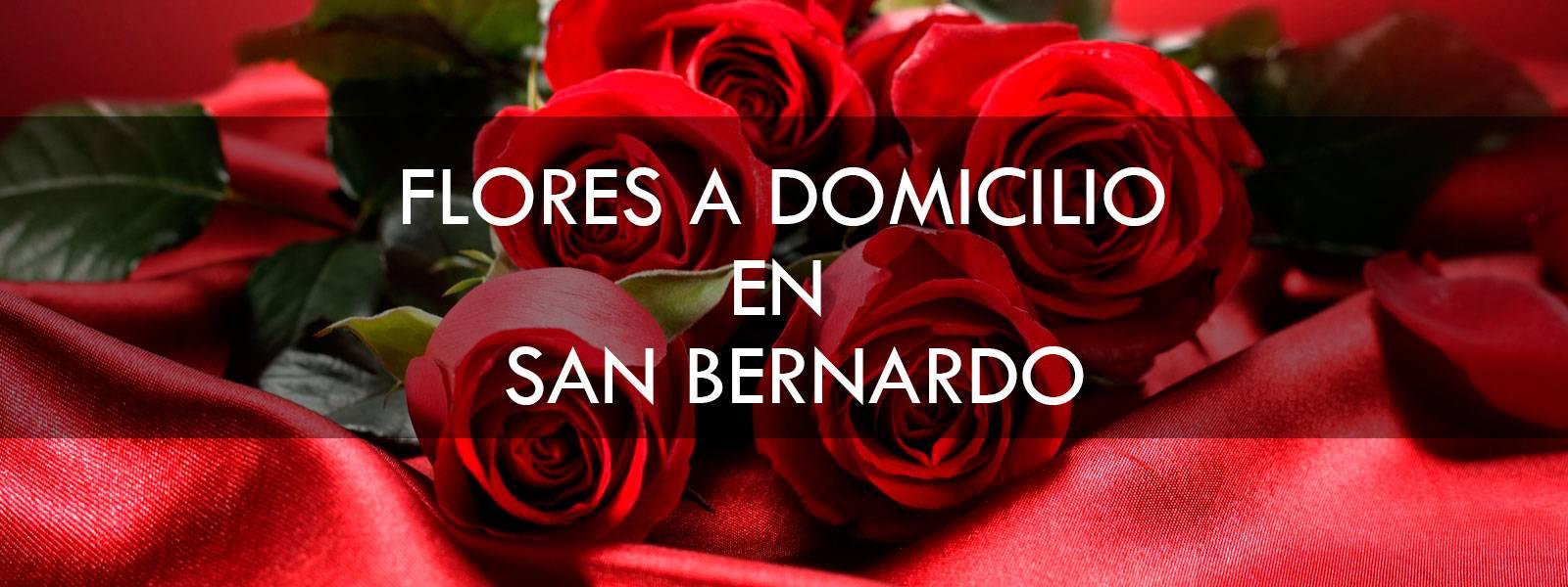 Flores a domicilio en San Bernardo