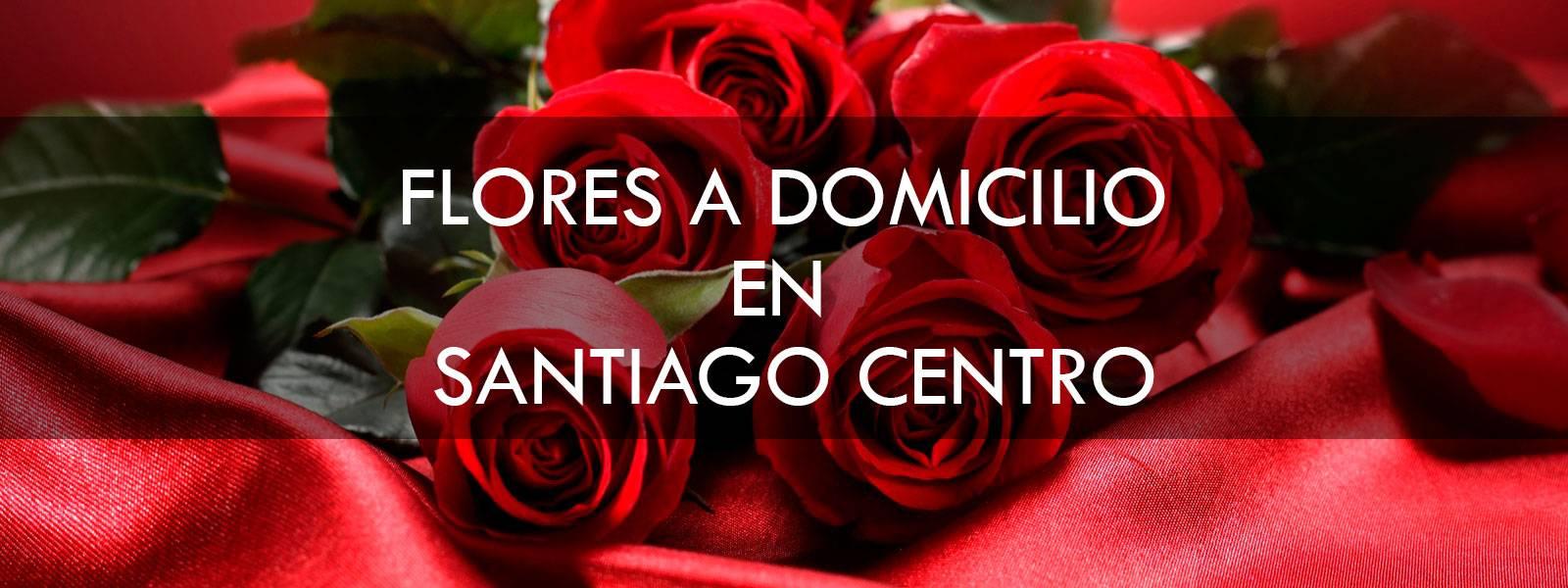 Flores a domicilio en Santiago Centro